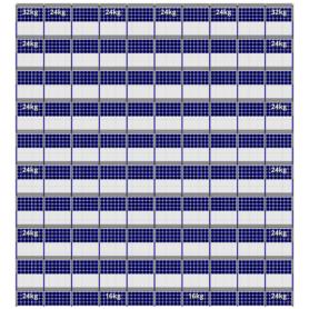 FlatFix Fusion 10 rijen van 10 zonnepanelen